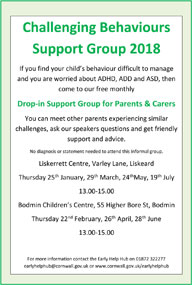 Challenging Behaviours Support Groups 2018 Small