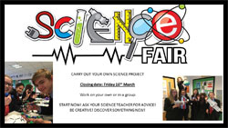 LSCC Science Fair House Competition